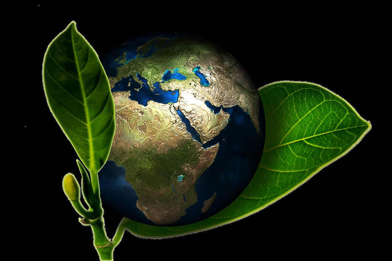 Une démarche éco-responsable dans l'hygiène