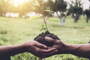 Environnement écologie